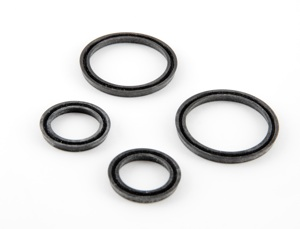 Seal Kit for Model 125 pump.